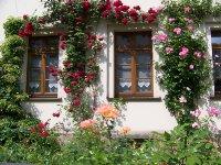 Ferienwohnung_Gruener_Garten.jpg